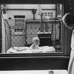Baby Cage (1930s)
